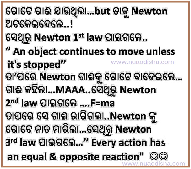 NIOS: D.El.Ed (C.T) Odia (ଓଡ଼ିଆ) 501 Assignment Papers