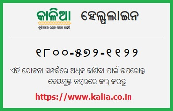 Image result for kalia yojana form