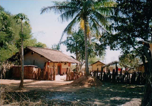 Chhota Mora Gaan Ti - NUA-SUNGUDA (Nuasunguda)