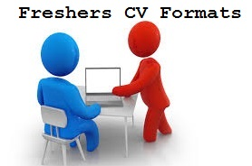 Best Freshers Resume Format For Bba Mba Business Analyst Mca Bca India