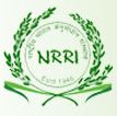 Job Openings in NRRI-Feb-2018