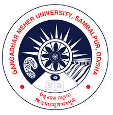 Opportunity at Gangadhar-Meher-University May-2020
