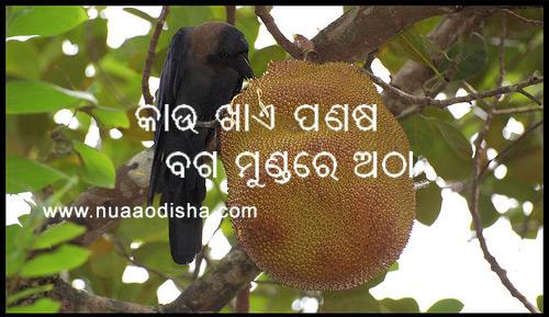 Pictures, Odia Kath O Notha, odia Bani Vani, Odia Loka Katha, Odia ...