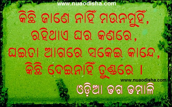 odia dhaga dhamali images  odia loka katha natha  odia proverb